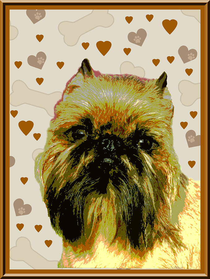 Brussels Griffen Photograph - Brussels Griffen by One Rude Dawg Orcutt