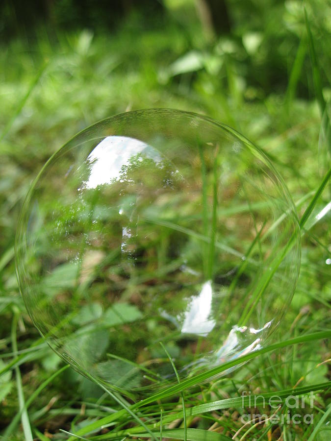Bubble Photograph - Bubble In The Grass by Mariah Stone