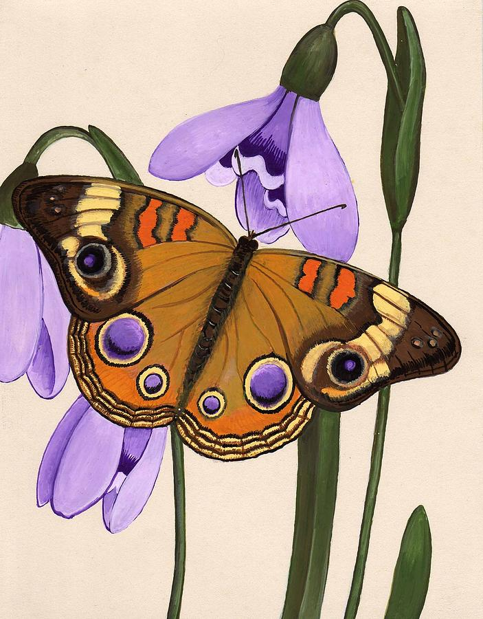 Butterfly Painting - Buckeye by Jeanne Rehrig