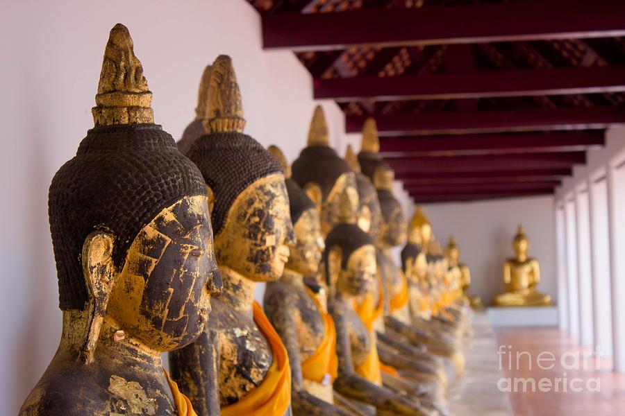 Buddha Sculpture - Buddha Culptures by Asaha Ruangpanupan