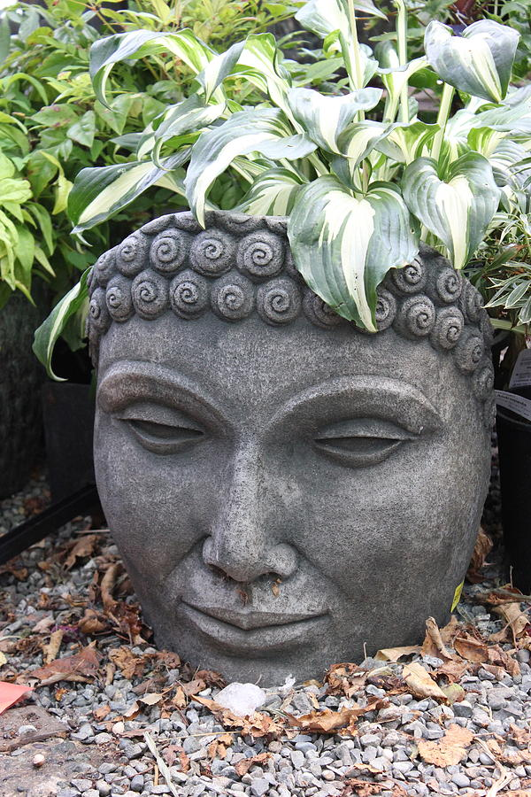 Bust Of Buddha On A Hot Summer Day Photograph - Buddha On A Hot Summer Island Day by Brian Sereda