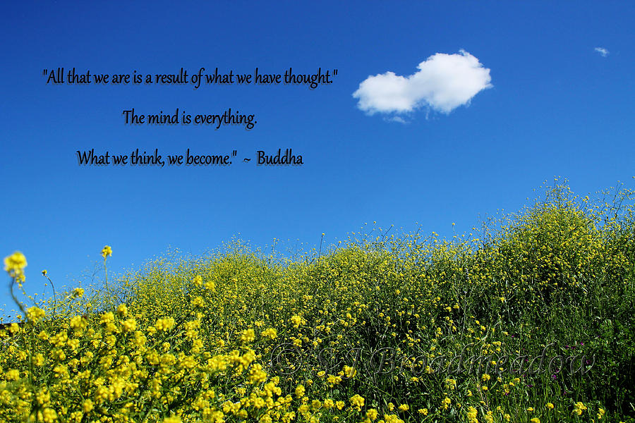 buddha quote on blue sky puffy white cloud photograph by