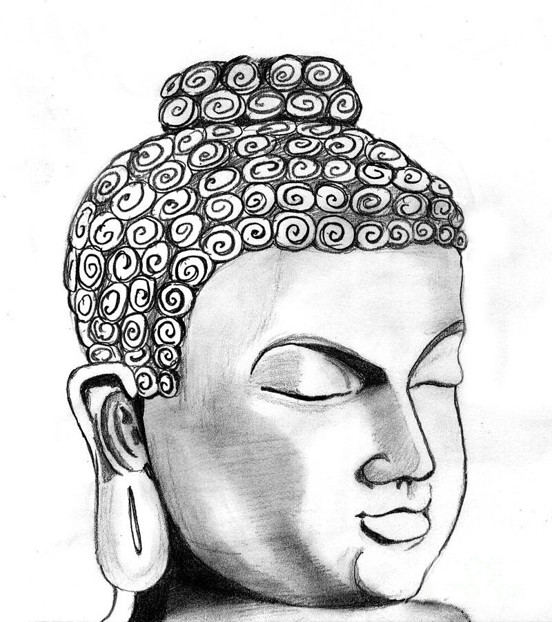 Portrait Drawing - Buddha by Shashi Kumar