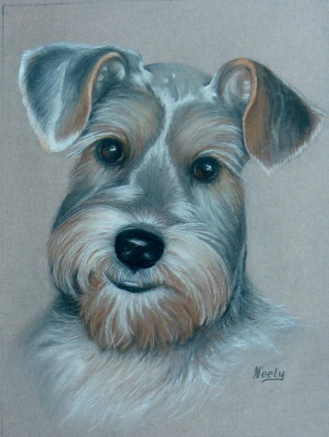 Animal Pastel - Buddy by Pat Neely