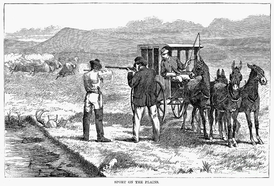 1874 Photograph - Buffalo Hunting, 1874 by Granger