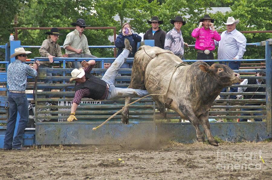 Sean Griffin Photograph - Bull 1 - Rider 0 by Sean Griffin