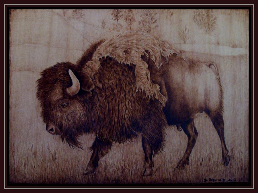 Pyrography Pyrography - Bull Attitude by Jo Schwartz