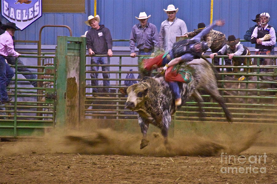 Sean Griffin Photograph - Bull Rider 1 by Sean Griffin