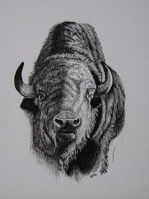Bull Painting by W Wayne Mosbarger