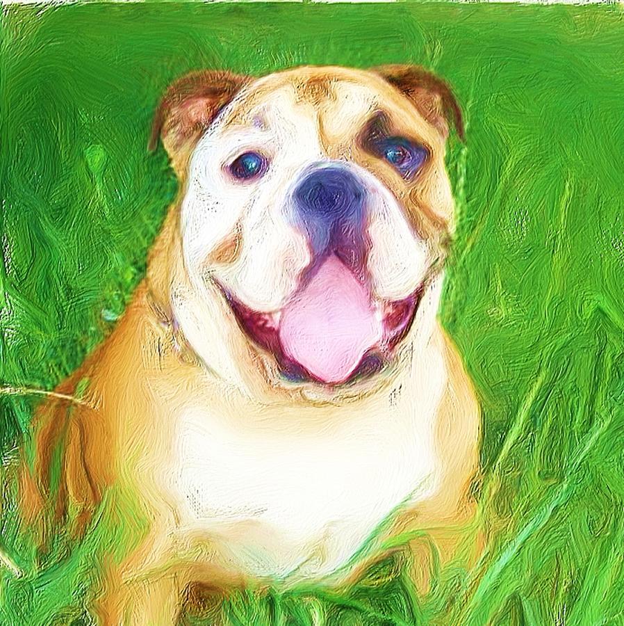 Bulldog Photograph - Bulldog by Ritmo Boxer Designs