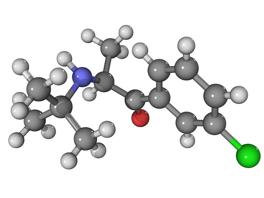 Molecular Photograph - Bupropion Antidepressant Drug Molecule by Laguna Design