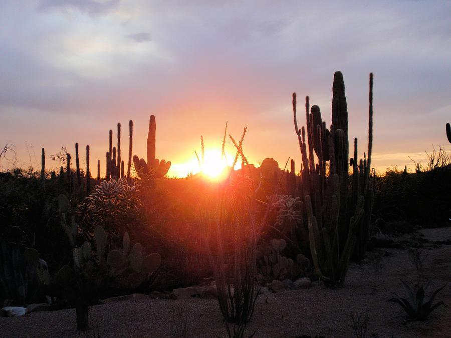 Desert Photograph - Burning Horizon by