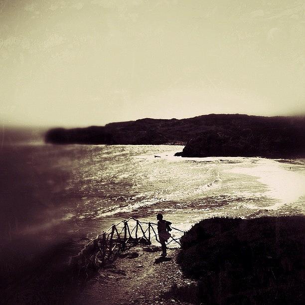 Nanit Photograph - Buscando Un Qué... #nanit Amigos!!!! by Cary Moll