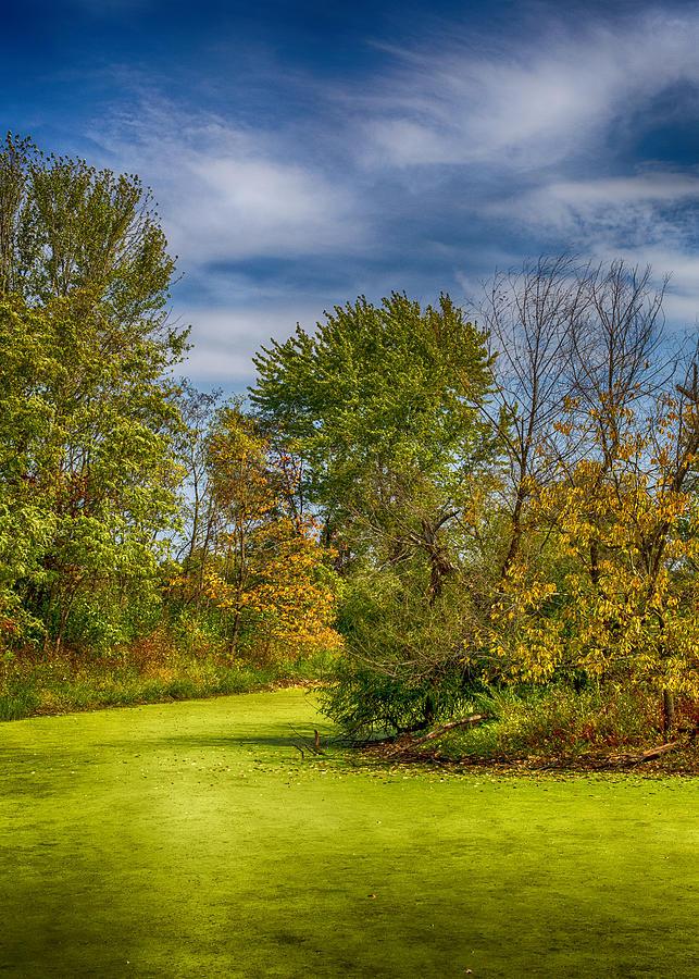 Lake Photograph - Busch Wildlife Swampy Autumn by Bill Tiepelman