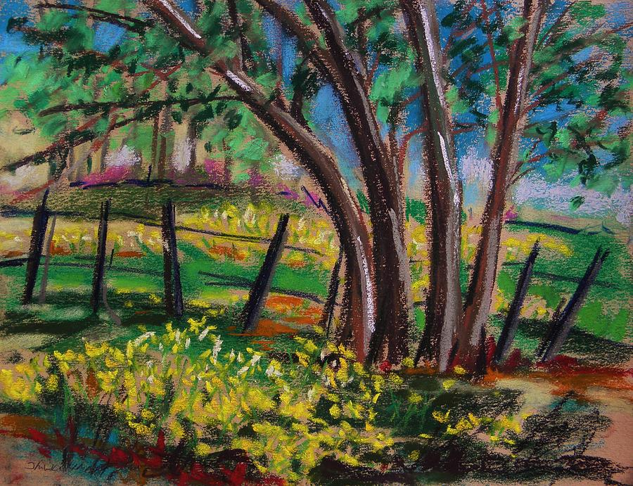 Pastel Painting - Buttercups by John Williams