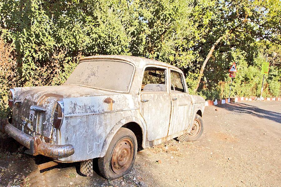 Interesting Photograph - Buy Me Very Low Maintenace by Kantilal Patel