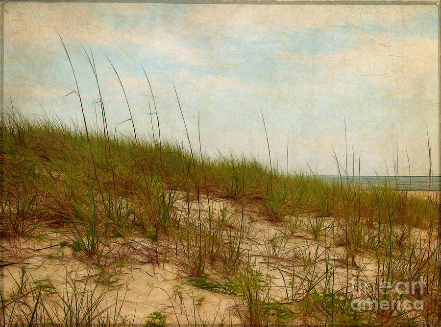 Dunes Photograph - By The Sea by Judi Bagwell