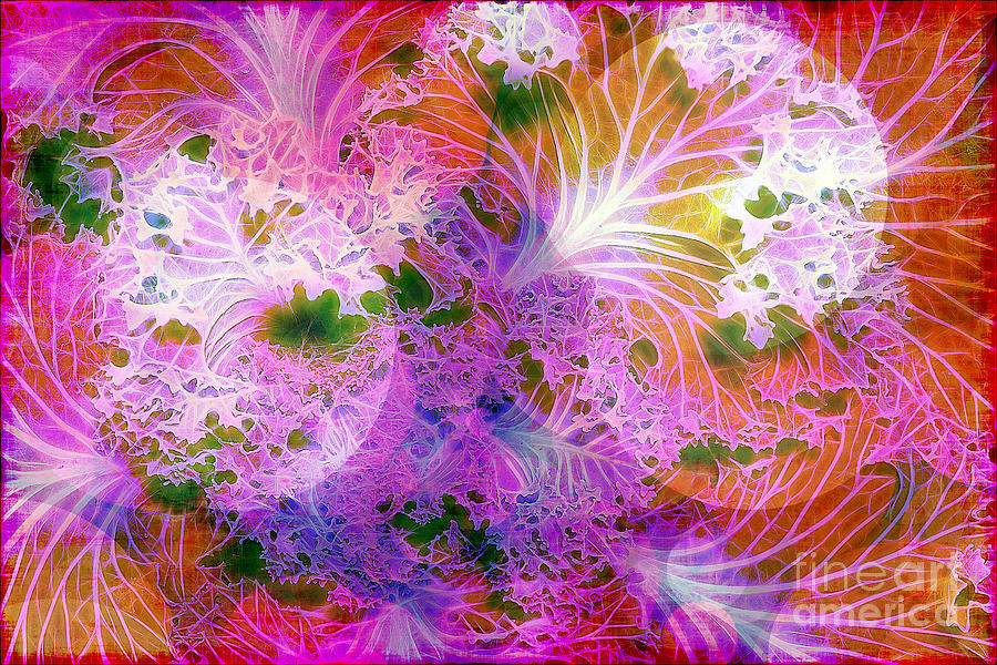 Abstract Photograph - Cabbage Moon by Judi Bagwell