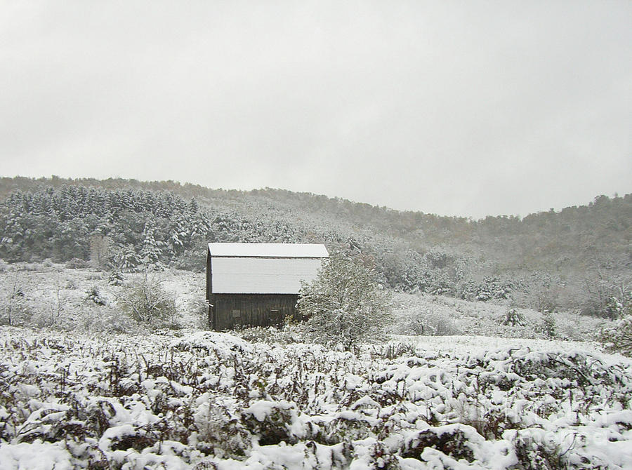Cabin Photograph - Cabin In The Snow by Michael Waters