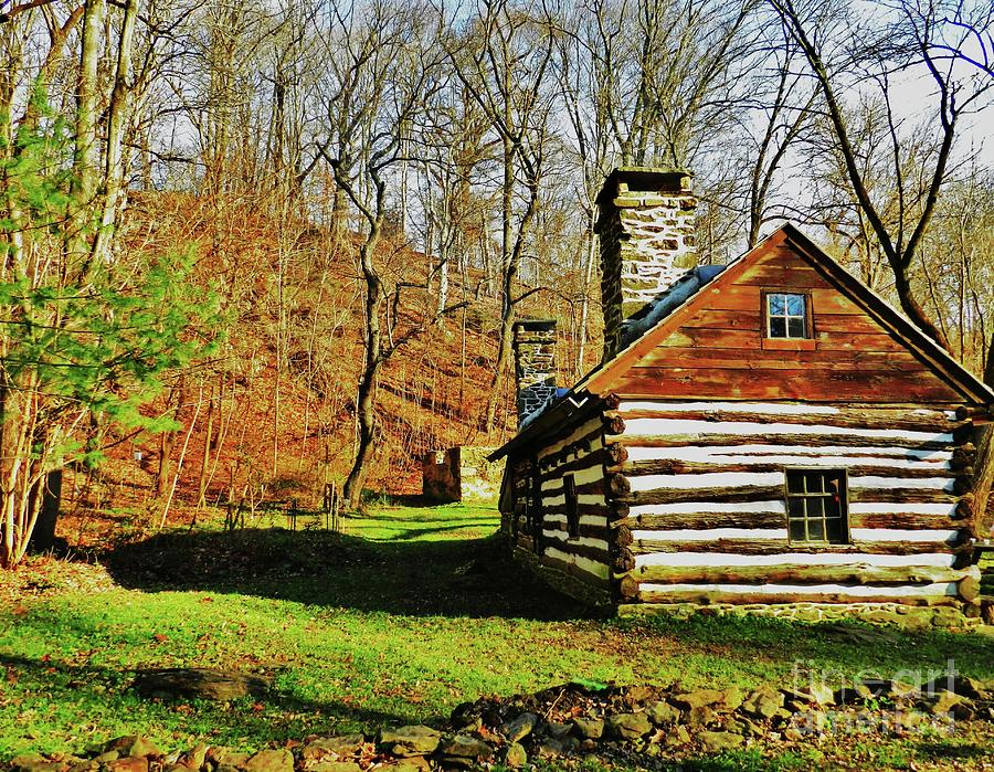 Swedish Cabin Photograph - Cabin In The Woods by Snapshot Studio