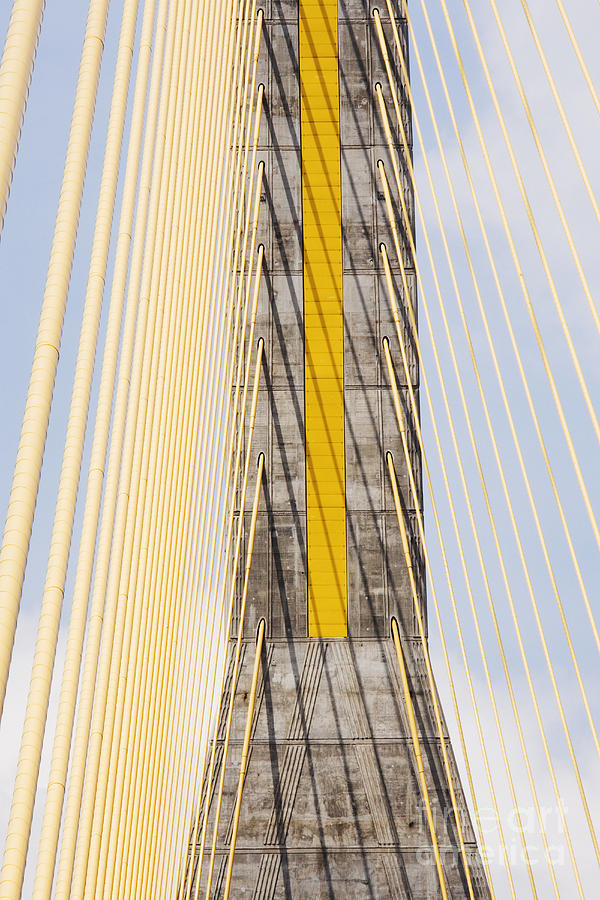 Bridge Photograph - Cables And Tower Of Cable Stay Bridge by Jeremy Woodhouse