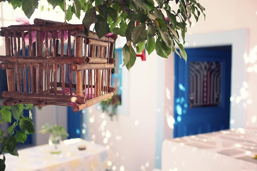 Horizontal Photograph - Cage by Vickie Abby@Macau - flickr.com/vickieabby/