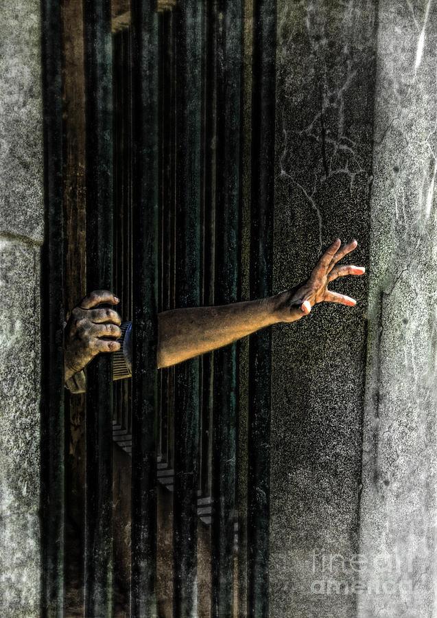 Hands Photograph - Caged 3 by Jill Battaglia
