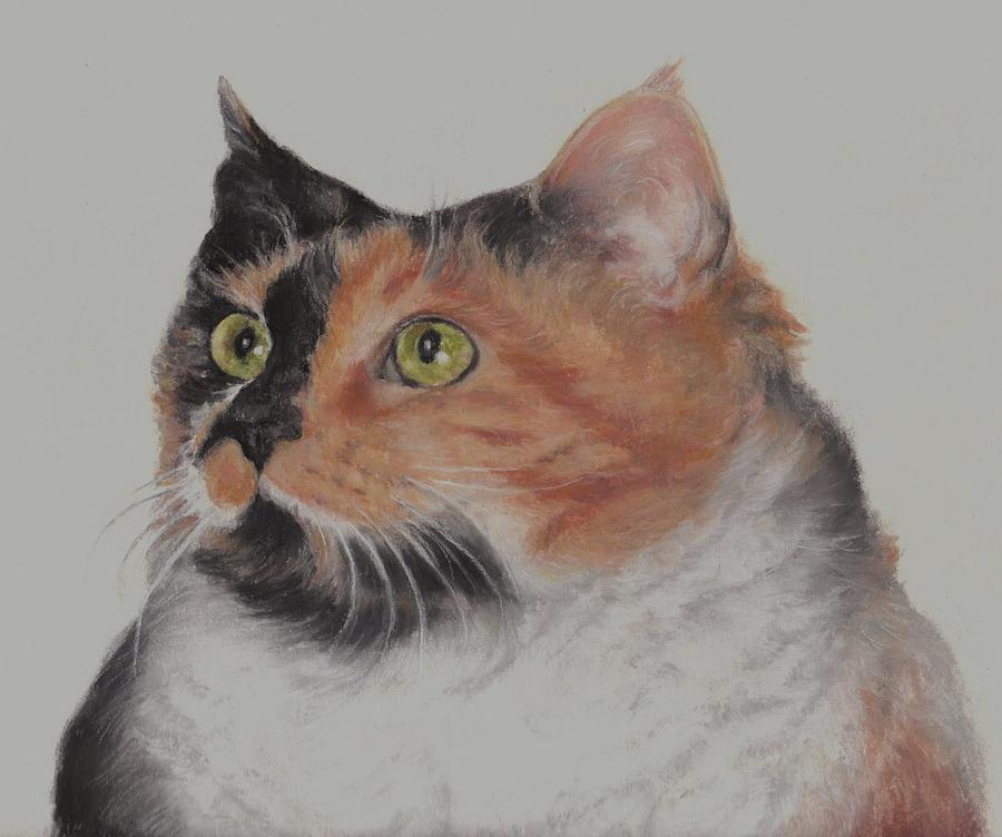 Pastels Pastel - Calico Cat Number Two by Pamela Humbargar