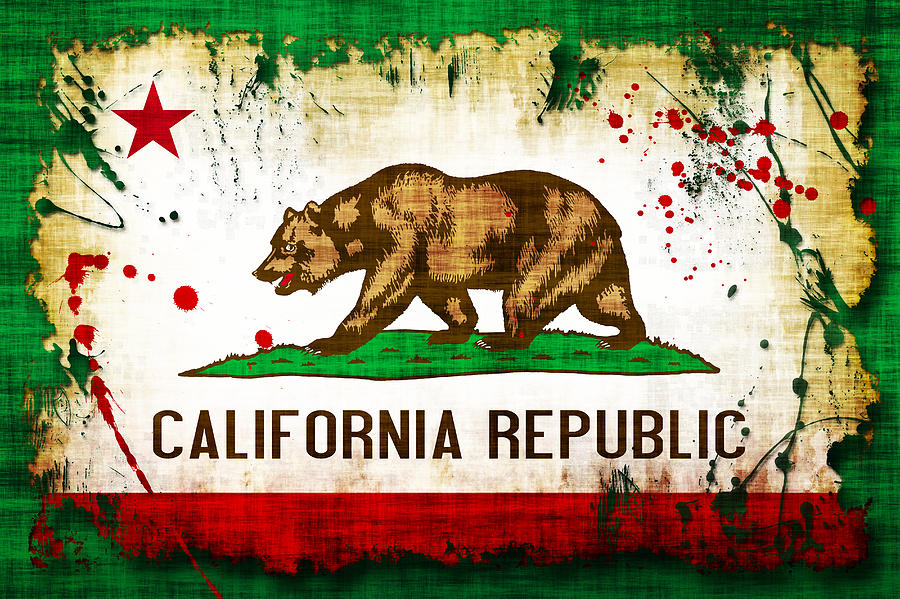 California Grunge Style Flag Photograph By David G Paul