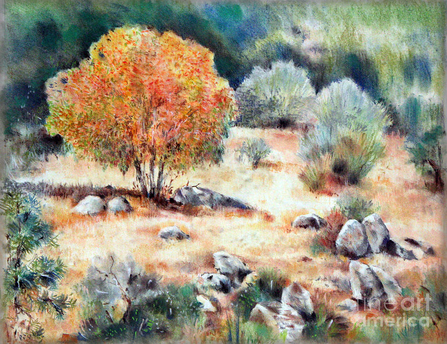 California Drawing - California Landscape by Natalia Eremeyeva Duarte