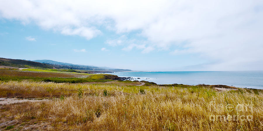 Hwy 1 Photograph - California Pacific Coast Highway - Forever Summer  by Artist and Photographer Laura Wrede