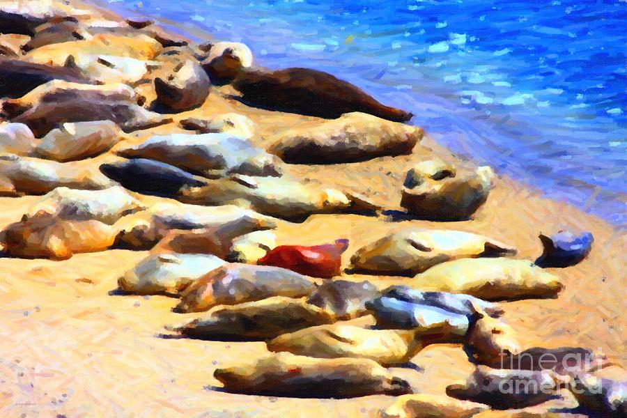 Bayarea Photograph - California Sunbathers . Harbor Seals by Wingsdomain Art and Photography