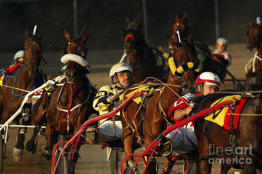 Horse Race Photograph - Calm Cool Collected by Bob Christopher