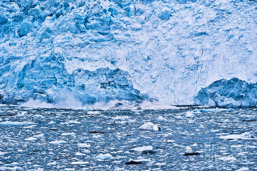 Alaska Photograph - Calving Glacier by John Greim