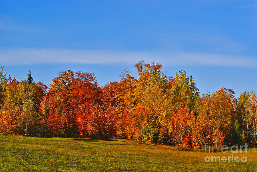 Autumn Photograph - Canada In Colors by Aimelle