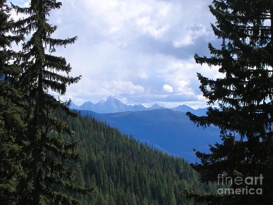 Canadian Rockies Photograph - Canadian Rockies by Kim Frank