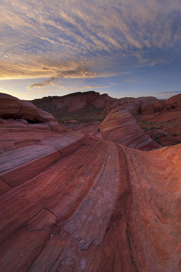 Valley Of Fire Photograph - Candy Stripes by Joseph Rossbach