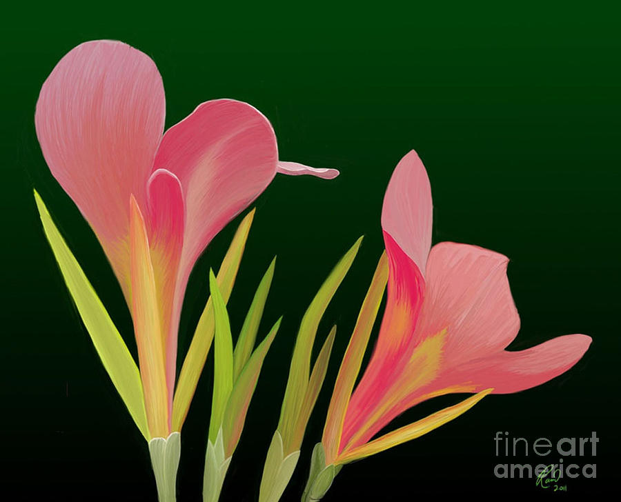 Flowers Painting - Canna Lilly Whimsy by Rand Herron