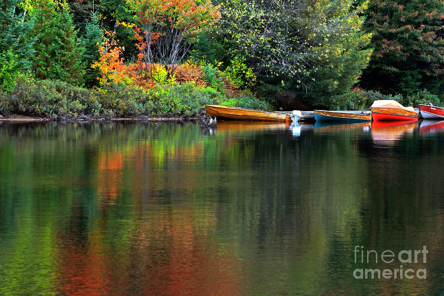 Algonquin Photograph - Canoe Lake by Charline Xia