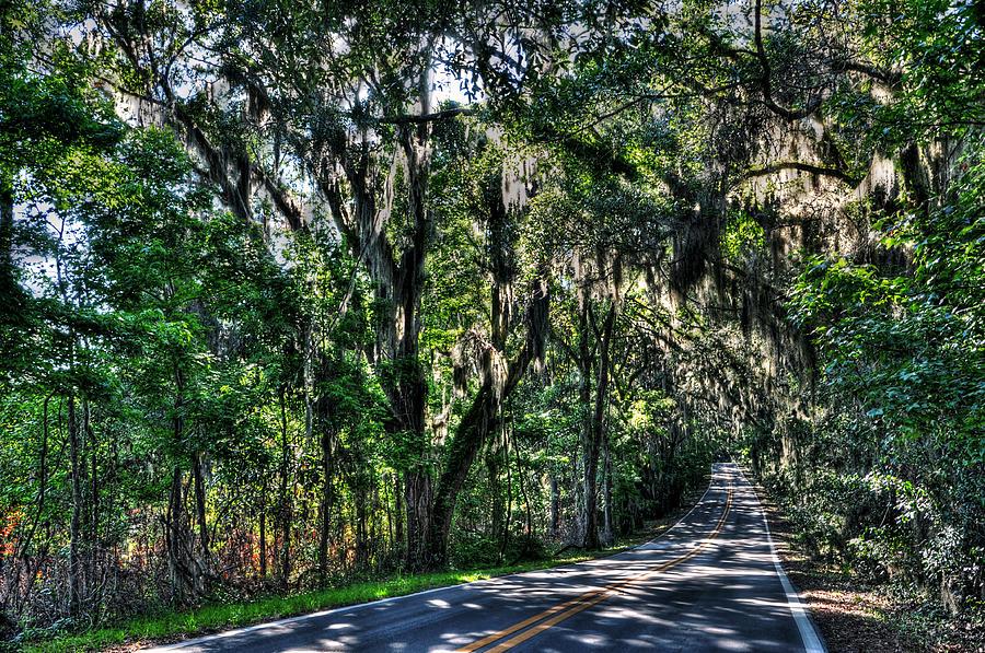 Florida Photograph - Canopy Road by Alex Owen & Canopy Road Photograph by Alex Owen