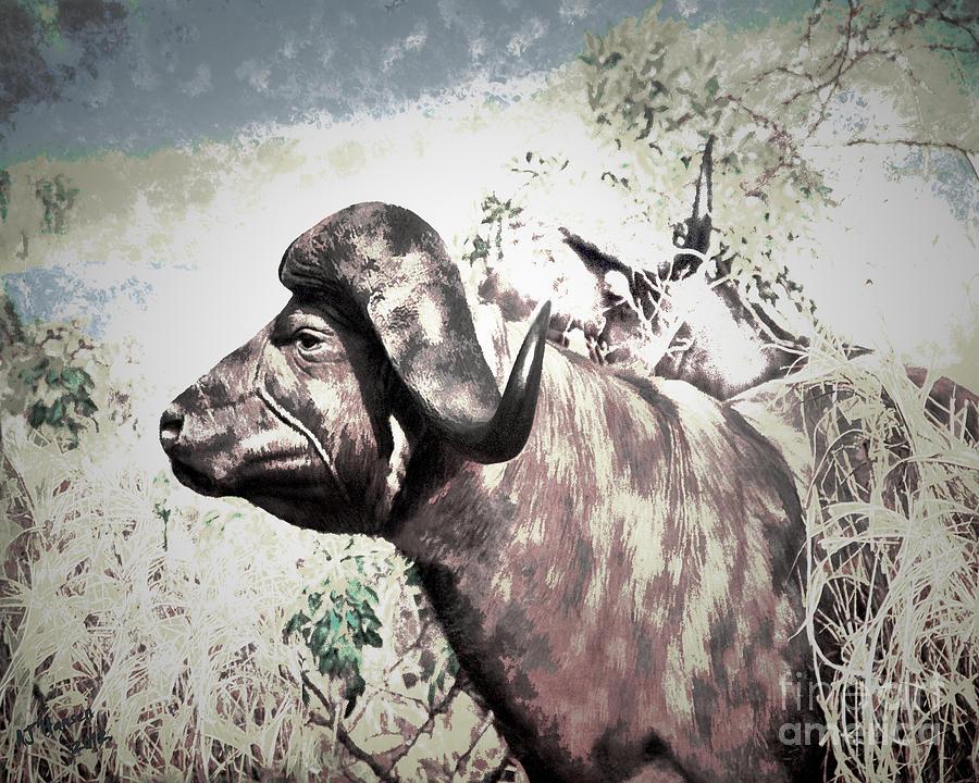 Arne J Hansen Photograph - Cape Buffalo by Arne Hansen