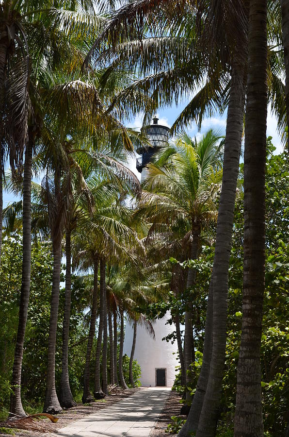 Cape Florida Lighthouse Photograph - Cape Florida Lighthouse by Brenda Thimlar