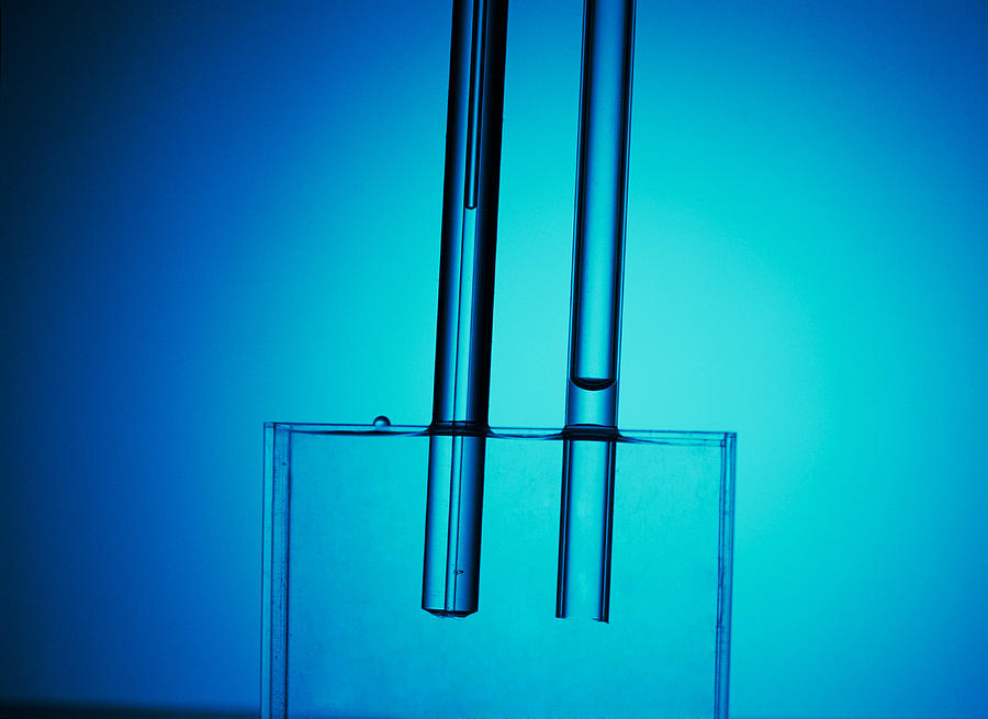 Capillary Action Of Water Photograph by Andrew Lambert Photography