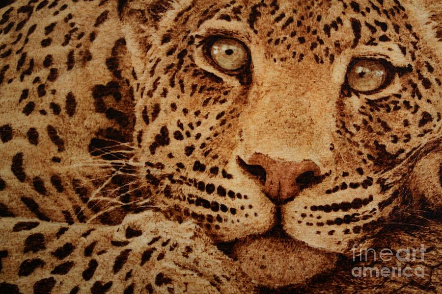 Leopard Pyrography - Captivated by Steven Hawkes