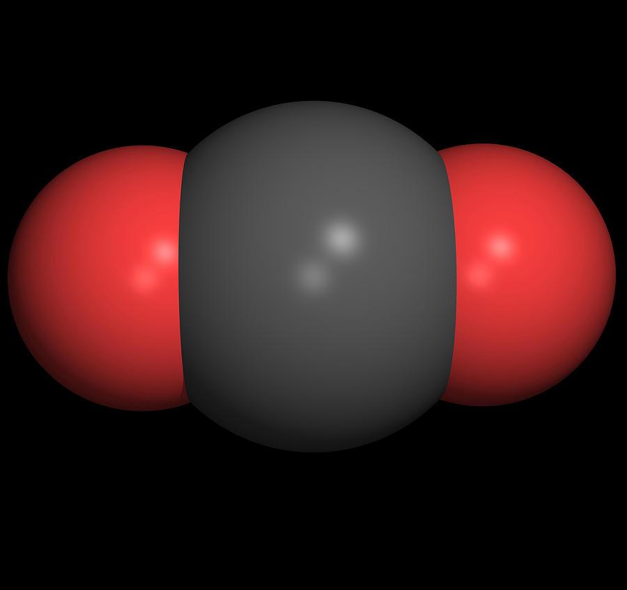 Carbon Dioxide Photograph - Carbon Dioxide Molecule by Friedrich Saurer