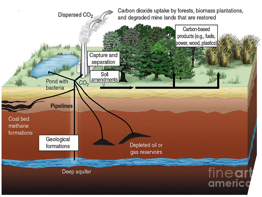 Science Photograph - Carbon Dioxide Sequestration by ORNL/Science Source
