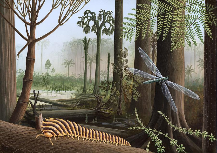 Arthropleura Photograph - Carboniferous Insects, Artwork by Richard Bizley
