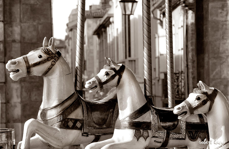 Merry-go-round Photograph - Carcassone Ride by Robert Lacy