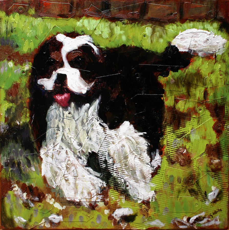Dog Painting - Carlos by Gaye White