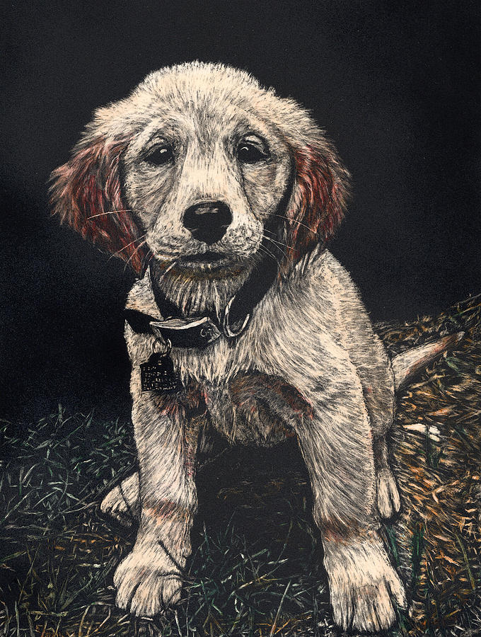 Puppy Painting - Carmen the Puppy by Robert Goudreau
